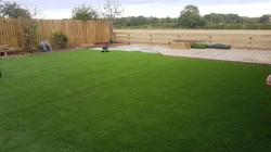 grass14