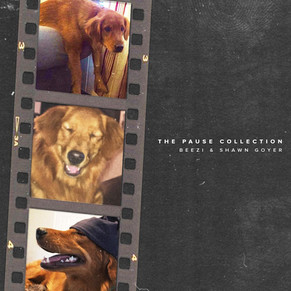 THE PAUSE COLLECTION by Beezi & Shawn Goyer