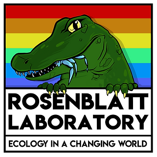 RosenblattLogo-PrideEdition.png