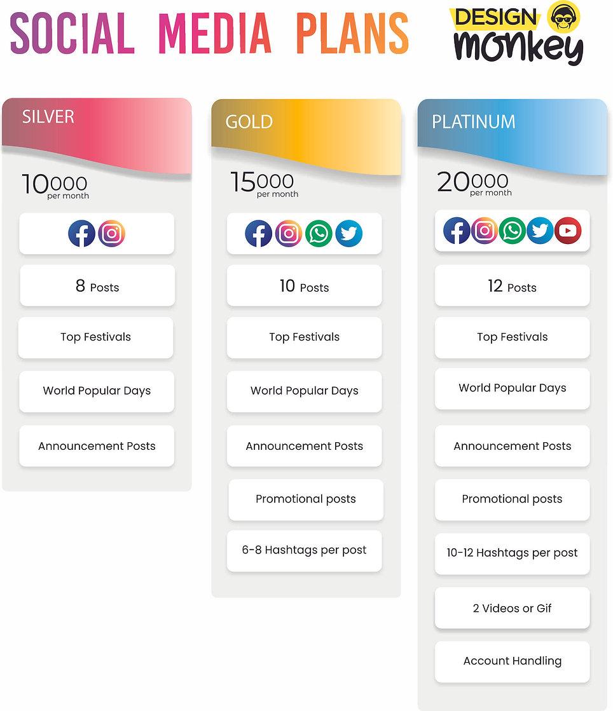 Design Monkey Social Media Plan Snip.jpg
