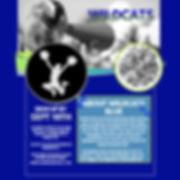 wildcats blue - -.jpg