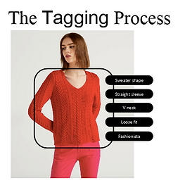 AskLily's tagging process in order to help all shoppers find their perfect fit with image recognition