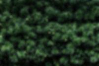 0053_Progetti Costa-53.jpg