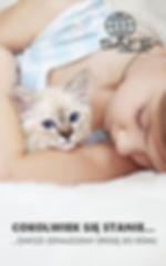 safe-animal-300x600.jpg