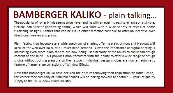 Bamberger Kaliko Plain Talking.jpg