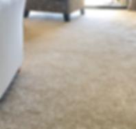 carpet 2.png