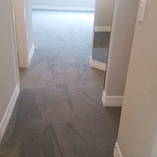Carpet Hall.PNG