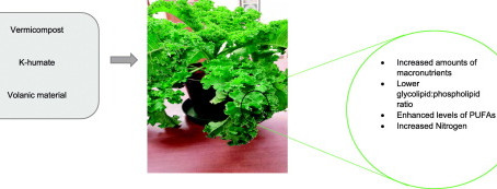 Chemical composition of kale as influenced by dry vermicast, potassium humate and volcanic minerals