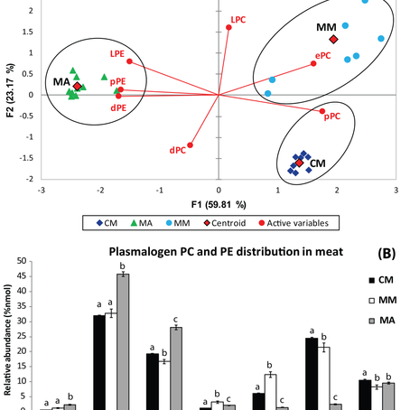 Big game cervid meat as a potential good source of plasmalogens for functional foods