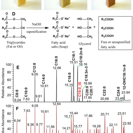 The Effects of Cold Saponification on the Unsaponified Fatty Acid Composition and Sensory Perception