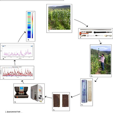 Development of a hyperspectral imaging technique using LA-ICP-MS