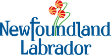 18-NL-Brand-Logo-Colour.png