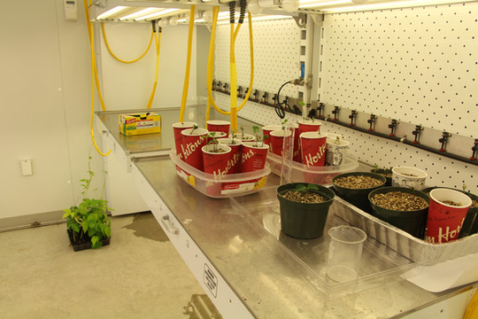 Controlled Environmental Growth Room