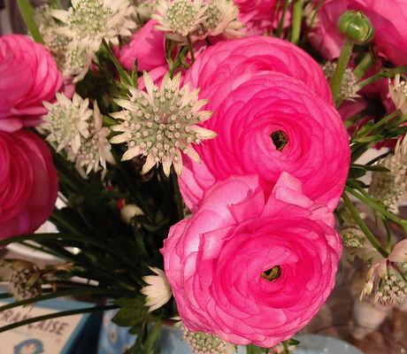flores11.jpg