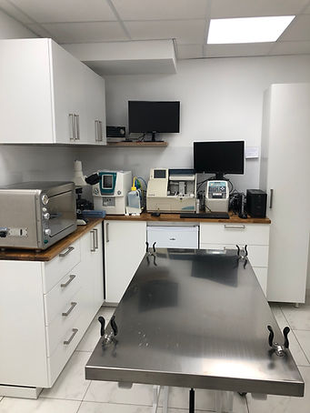 Une table pour éféctuer des analyses biologiques au cabinet vétérinaire Endoume 13007