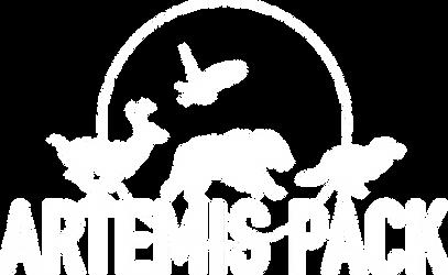Artemis Pack Logo White.png