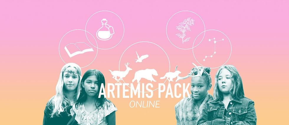 Artemis Pack Online.jpg