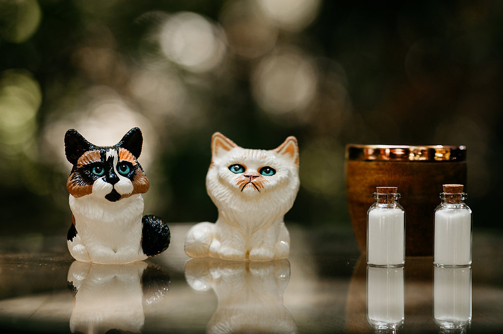 Sand Unity Ceremony | Snohomish Wedding in the Woods | Cats in Weddings