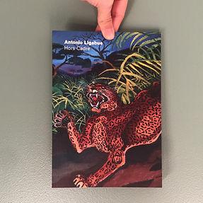 """Catalogue exposition """"Antonio Ligabue : Hors cadre"""", Festival du film de la Roche-sur-Yon 2020"""