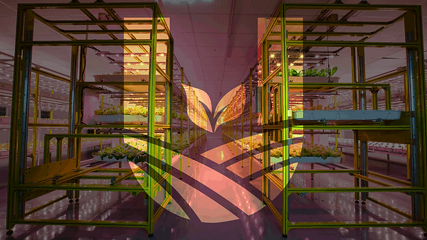 plantfactory-thumb-800x450.png