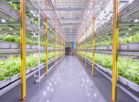 A high-yield indoor farming system ideal for the city