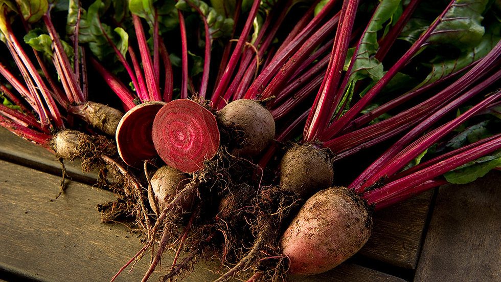 Beetroot golden