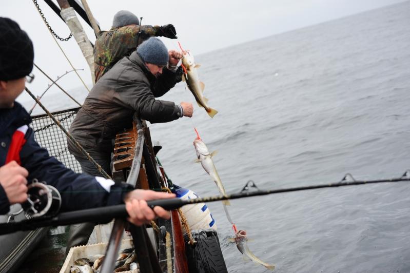 Морская рыбалка 6