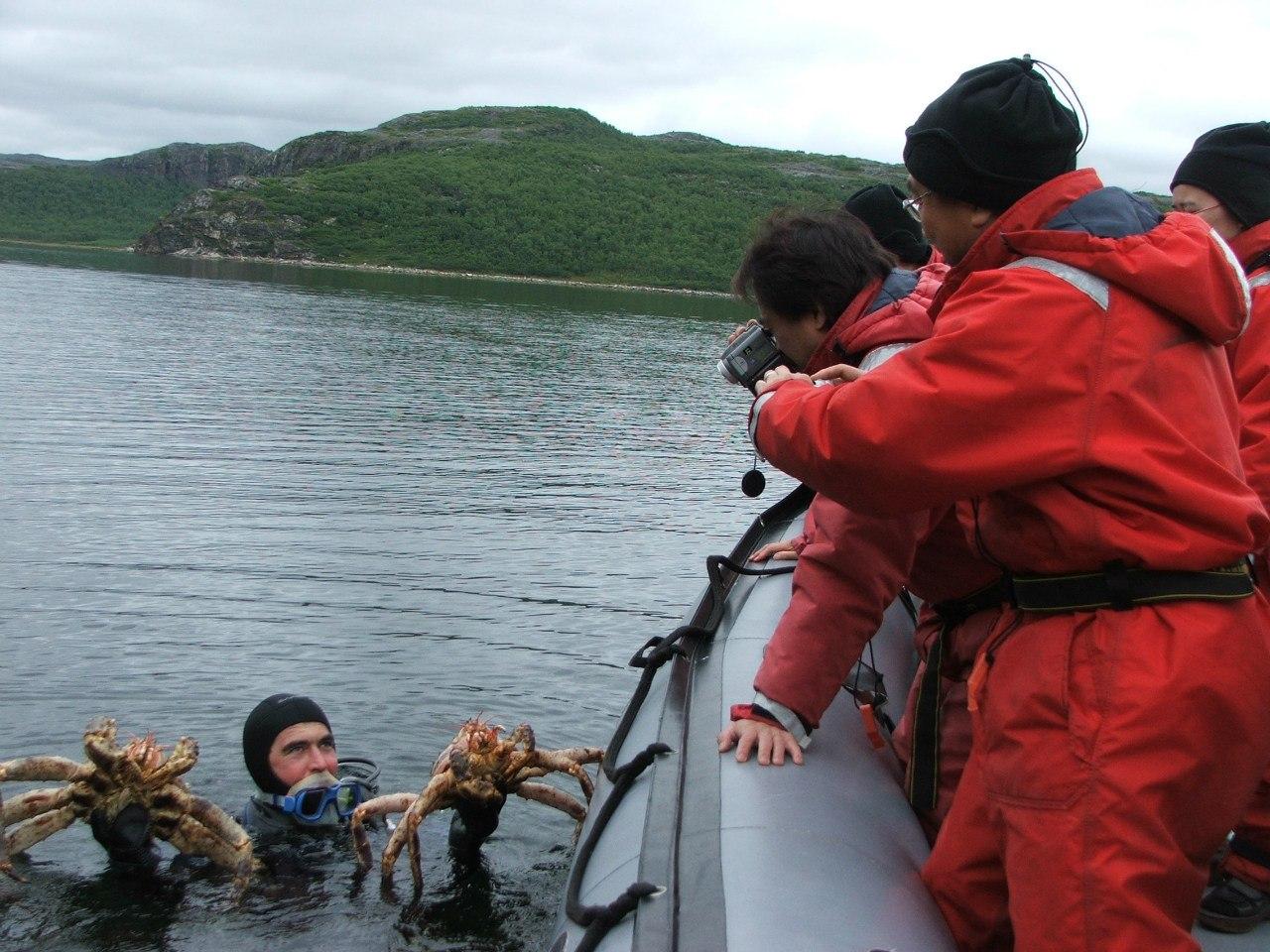 Морская рыбалка в Киркенесе 6