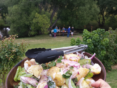 A Vegetable Harvest & A Summer BBQ