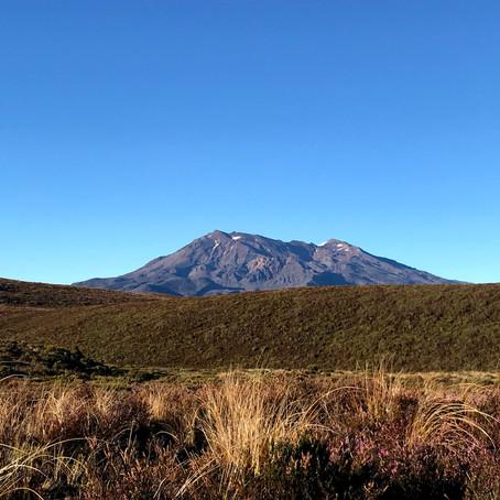 New Zealand & Australia Lookbook