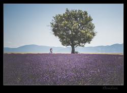 Photographe de Mariage a Marseille- Moussa Laribi