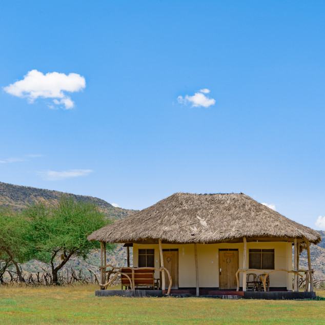Maasai giraffe Eco Lodge Lake Natron, Tanzania
