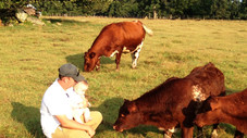 Can you afford not to Creep Feed?