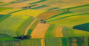 agriculture-soil-survey-drone-survey-aer