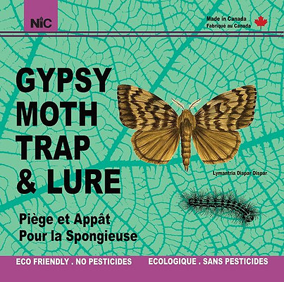 Gypsy Moth Trap and Lure