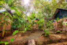 Cacao Monkeys Rustic Lodge