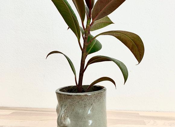 Ansikte med Växt, H: 15 cm