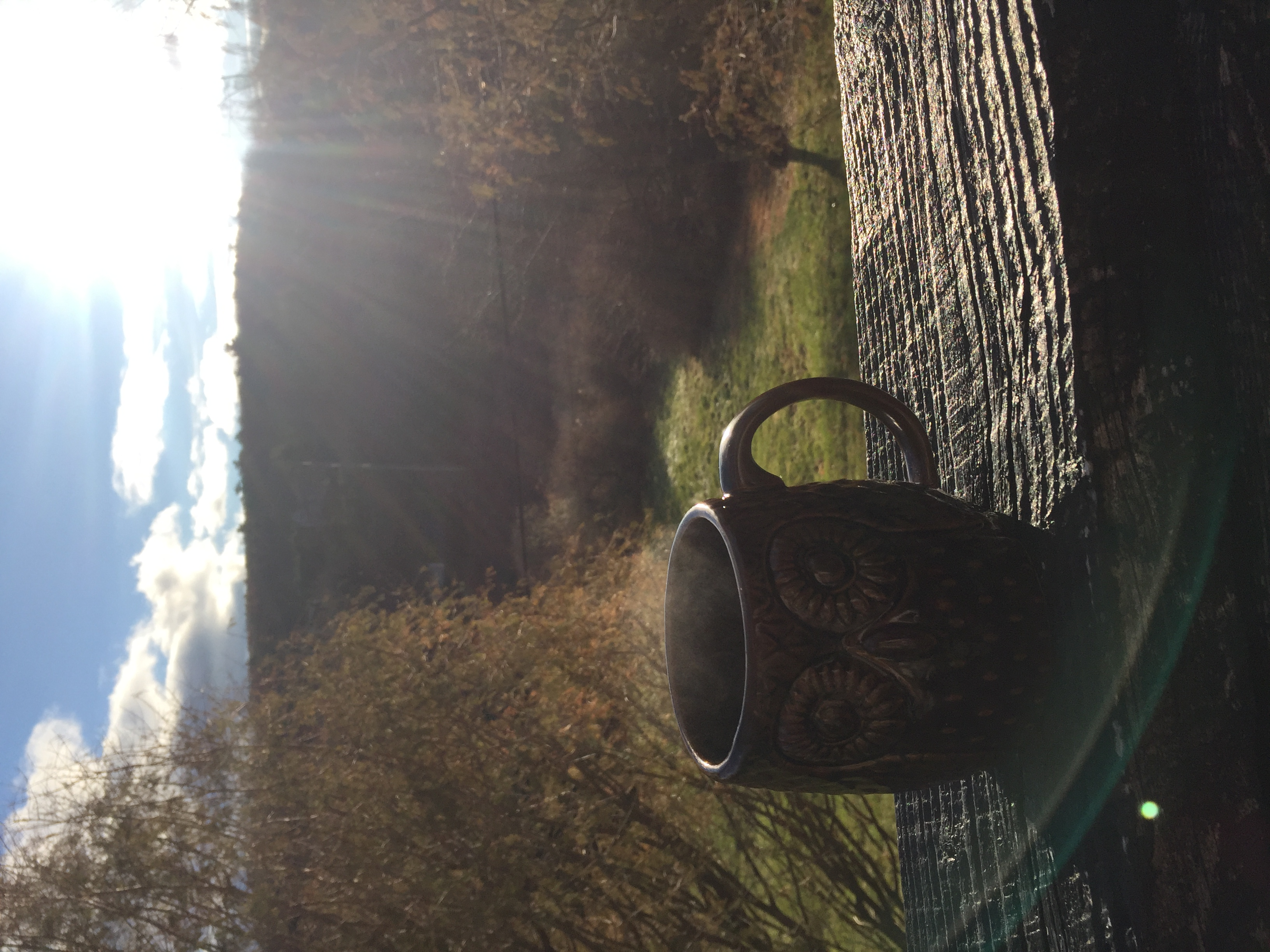 Coffee off the Sun lit deck