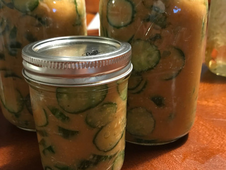 Miso Pickled Keiki Cucumbers