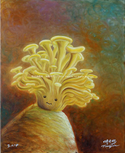 時光菇Time mushroom