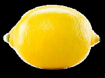 frukt-ovosh-ili-yagoda-600x450.png