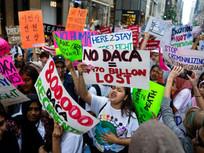Trump Ends DACA (Dreamers)