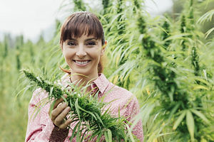 crop chop cover website .jpg