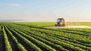 agroindustrial3-Copiar.jpg
