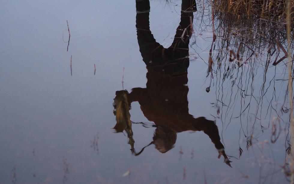 Pauli Lyytinen, Saksofonistin peilikuva