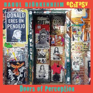 Raoul Björkenheim eCsTaSy: Doors of Perception