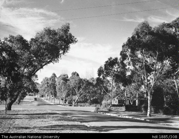 Melbourne Avenue - 1945