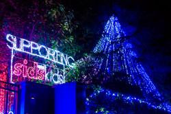Forrest Christmas Lights - 2013