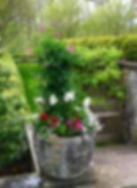 Spring 2016 planter 6.jpg