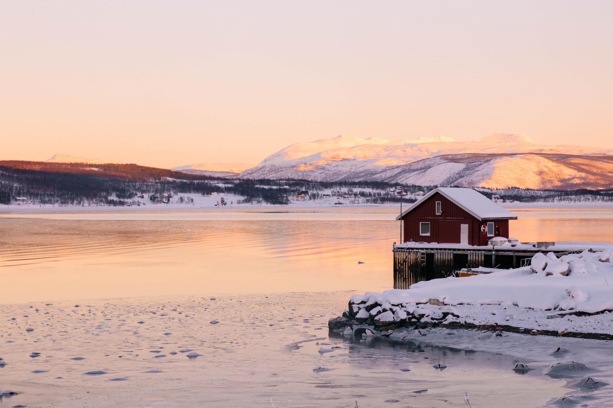 ile-senja-norvege-13
